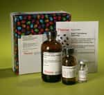 Pierce™ Phosphoprotein Phosphate Estimation Assay Kit