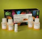 Pierce™ Quantitative Peroxide Assay Kit (Lipid)