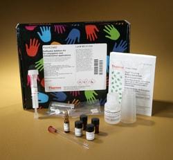Pierce™ Sulfhydryl Addition Kit
