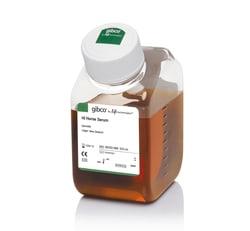 Horse Serum, heat inactivated, New Zealand origin