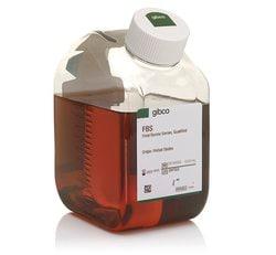 Fetal Bovine Serum, qualified, United States