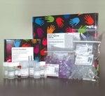 Pierce™ Agarose ChIP Kit