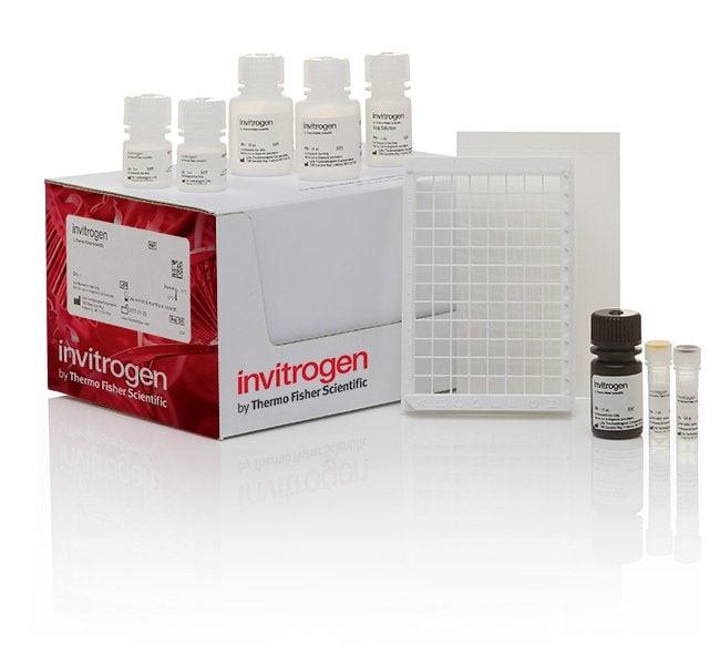 Glucose Colorimetric Detection Kit Thermo Fisher Scientific