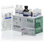 MagMAX™ DNA Multi-Sample Kit