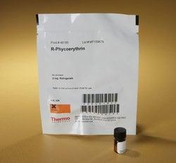 R-Phycoerythrin