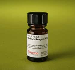 FDAA (Marfey's Reagent) (1-fluoro-2-4-dinitrophenyl-5-L-alanine amide)