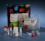 Pierce™ NHS-Fluorescein Antibody Labeling Kit