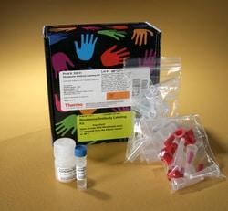 Pierce™ NHS-Rhodamine Antibody Labeling Kit