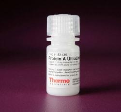 Pierce™ Protein A UltraLink™ Resin
