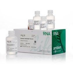 Dynabeads® mRNA DIRECT™ Micro Purification Kit