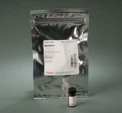 Aprotinin Protease Inhibitor