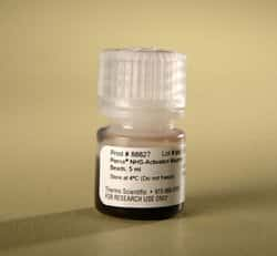 Pierce™ NHS-Activated Magnetic Beads