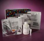 Pierce™ S-Nitrosylation Western Blot Kit