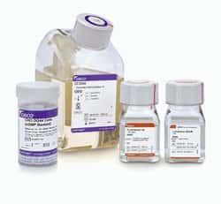 CHO DG44 Cells (cGMP banked) and Media Kit