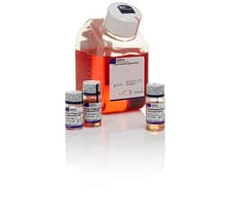 PSC Dopaminergic Neuron Differentiation Kit