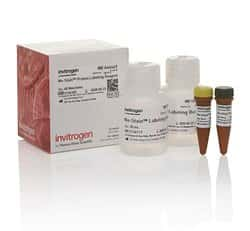 No-Stain™ Protein Labeling Reagent