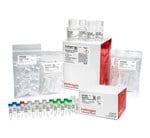 MessageAmp™ II-Bacteria RNA Amplification Kit