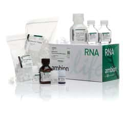 RNAqueous™ Total RNA Isolation Kit