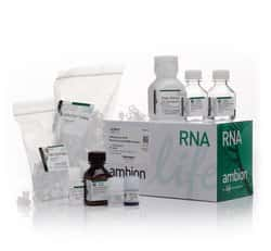 RNAqueous™-4PCR Total RNA Isolation Kit