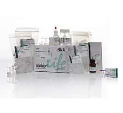 RiboPure™ RNA Purification Kit, bacteria