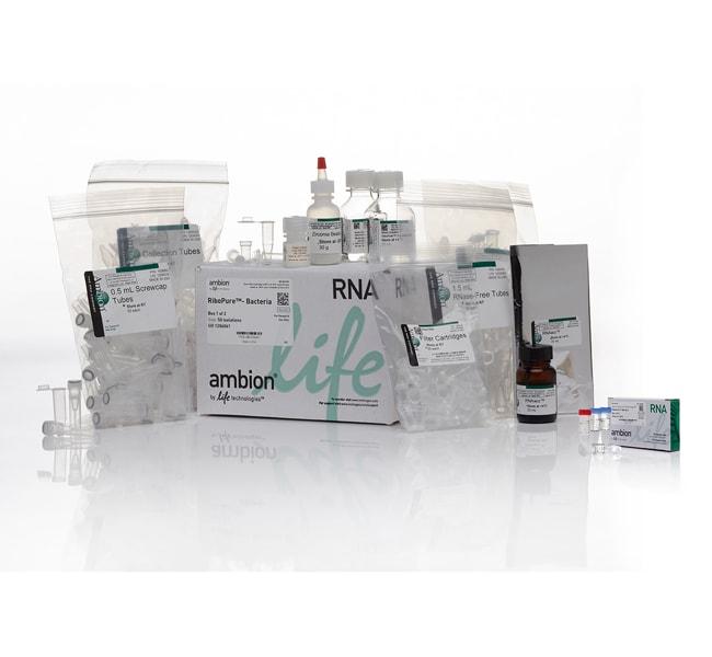 RiboPure™ RNA Purification Kit, bacteria