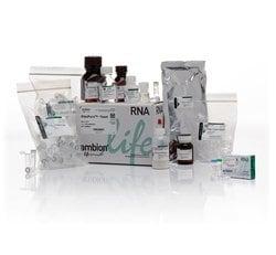 RiboPure™ RNA Purification Kit, yeast