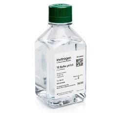 TE, pH 8.0
