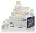 Click-iT® EdU Alexa Fluor® 647 Flow Cytometry Assay Kit