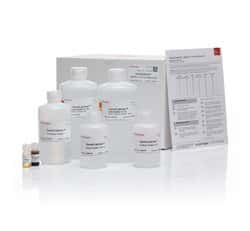 GeneCatcher™ gDNA Blood Kit, 3-10 mL