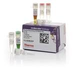 Phusion Blood Direct PCR Master Mix