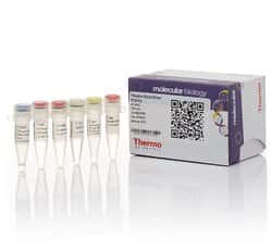 Phusion Blood Direct PCR Kit