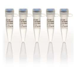 Phusion Flash High-Fidelity PCR Master Mix