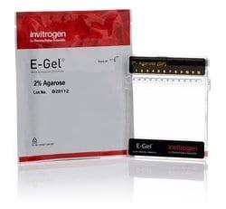 E-Gel™ General Purpose Agarose Gels, 2%