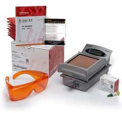 E-Gel™ SizeSelect™ Agarose Gels Starter Kit, 2%