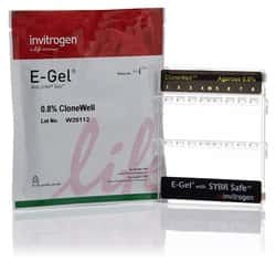 E-Gel™ CloneWell™ Agarose Gels with SYBR™ Safe DNA Gel Stain, 0.8%