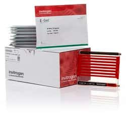 E-Gel™ 96 Gels with SYBR™ Safe DNA Gel Stain, 2%