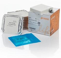 iBlot™ 2 Transfer Stacks, nitrocellulose, mini