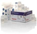 GeneJET Plasmid Maxiprep Kit