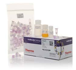 GeneJET PCR Purification Kit