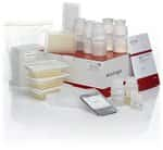 PureLink&reg; <i>Pro</i> 96 Genomic DNA Purification Kit