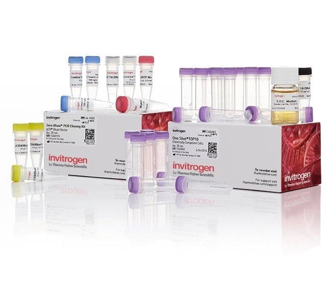 Zero Blunt™ PCR Cloning Kit