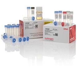 Zero Blunt™ TOPO PCR Cloning Kit for Subcloning