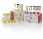 Zero Blunt&trade; TOPO&trade; PCR Cloning Kit for Sequencing, with One Shot&trade; TOP10 Electrocomp&trade; <i>E. coli</i>