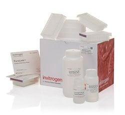 PureLink™ <i>Pro</i> 96 PCR Purification Kit