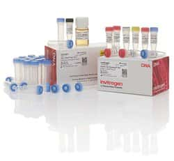 TOPO&trade; TA Cloning&trade; Kit for Subcloning, with TOP10F' <i>E. coli</i>