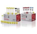TOPO™ TA Cloning™ Kit for Subcloning, with One Shot™ TOP10 Electrocomp™ <i>E. coli</i>