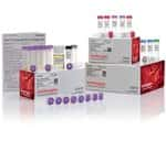 TOPO™ TA Cloning™ Kit for Sequencing, with One Shot™ TOP10 Chemically Competent <i>E. coli</i> (Supply Center Packaging)