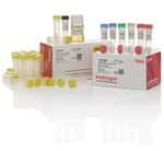 TOPO&reg; TA Cloning&reg; Kit, Dual Promoter, with pCR&trade;II-TOPO&reg; Vector and One Shot&reg; TOP10 Electrocomp&trade; <i>E. coli</i>