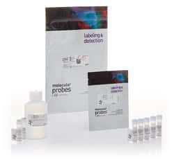 LIVE/DEAD™ Cell Vitality Assay Kit, C<sub>12</sub> Resazurin/SYTOX™ Green