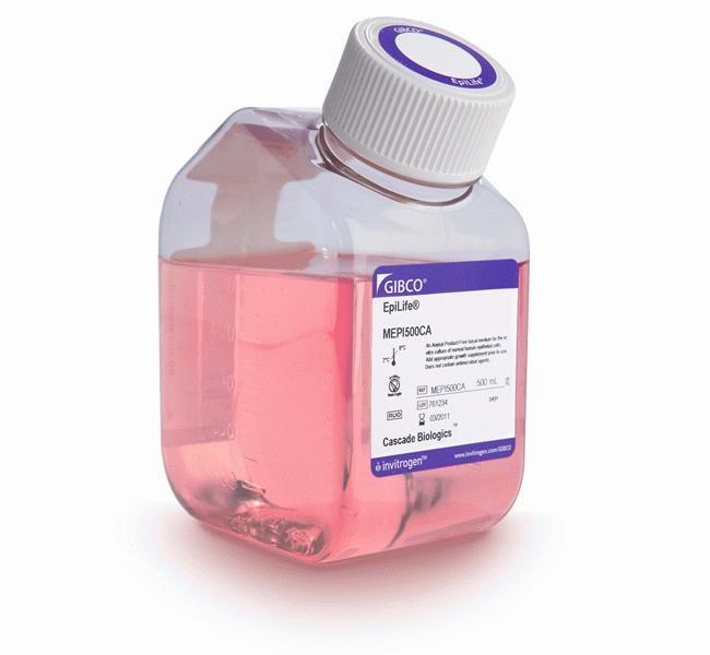 EpiLife™ Medium, with 60 µM calcium